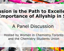 Inclusion is the Path to Excellence: The Importance of Allyship in STEM